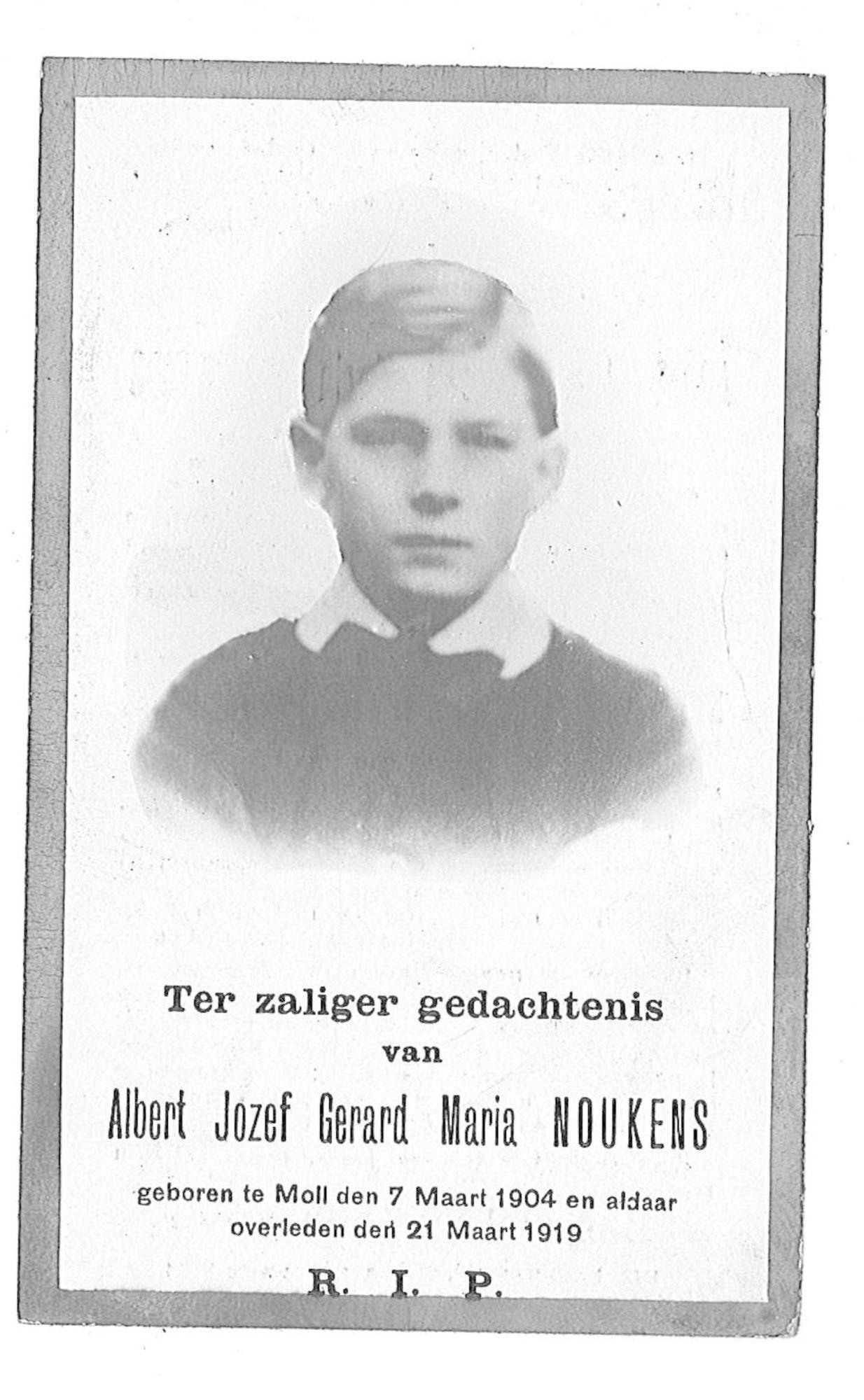 Albert-Jozef-Gerard-Maria Noukens