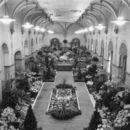 Bloemententoonstelling in het stadhuis