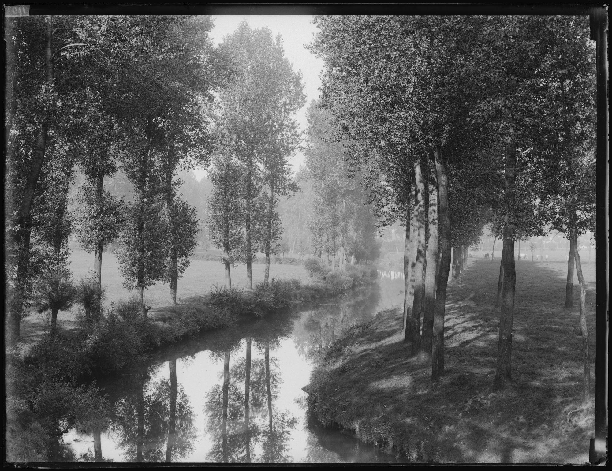 Schilderachtig landschap met bomenrij langs waterloop