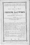 Petrus Bauwens