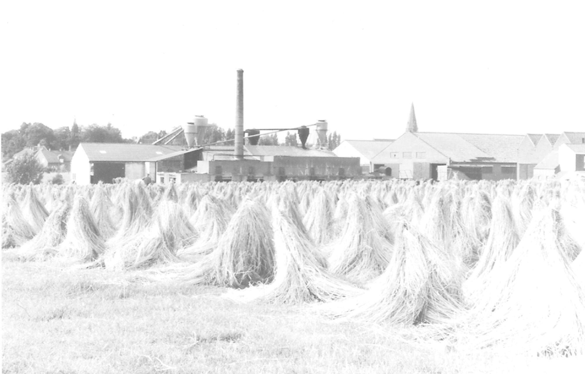 Vlasfabriek Holvoet