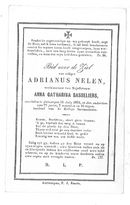 Adrianus Nelen