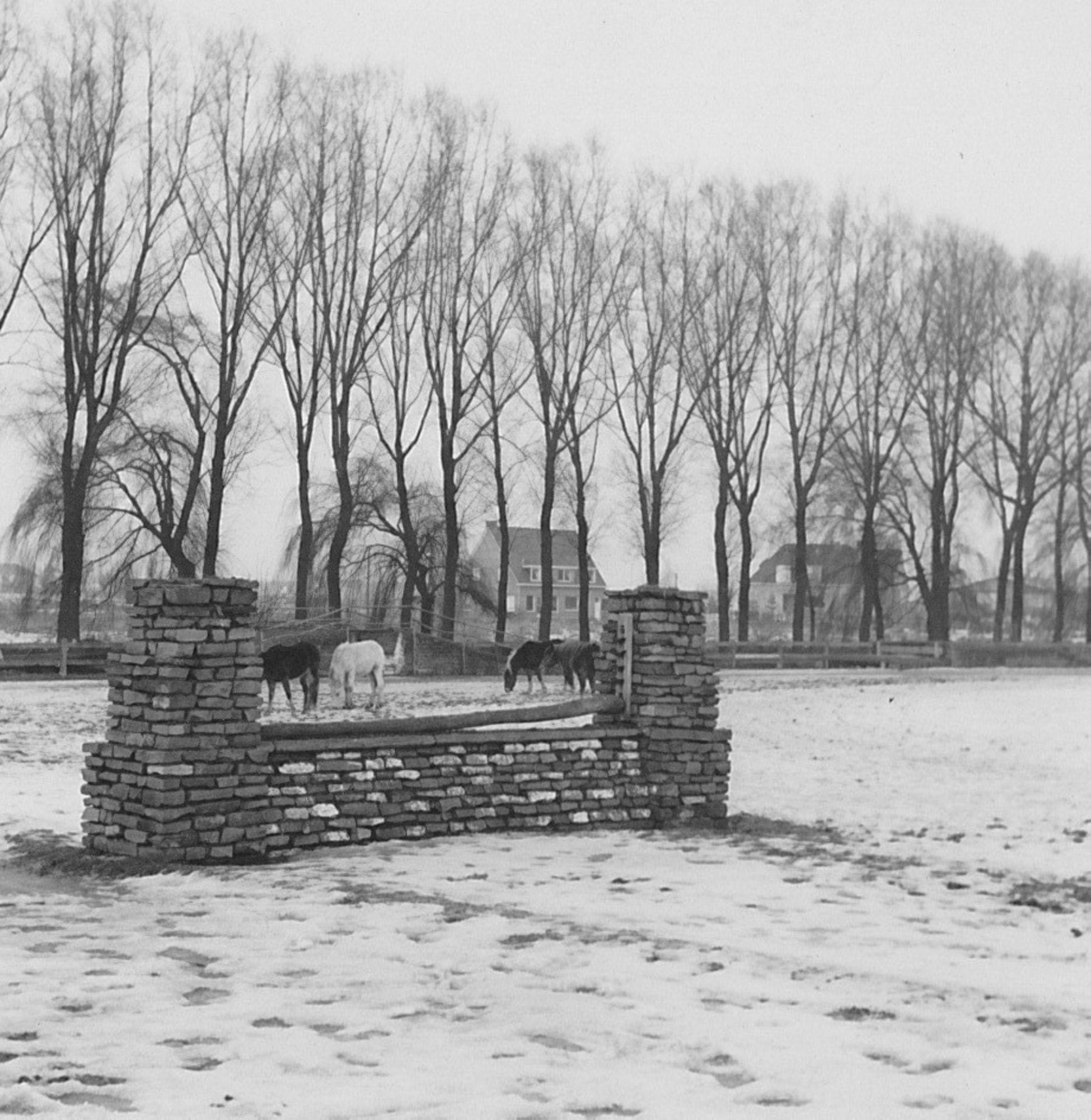 Ruiterclub Gulden Spoor 1957