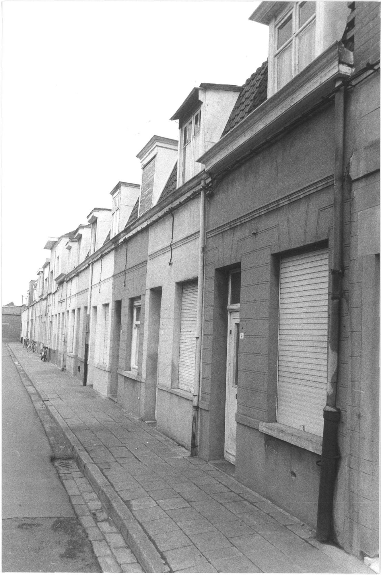 Beluik Vannestes Reke 1981
