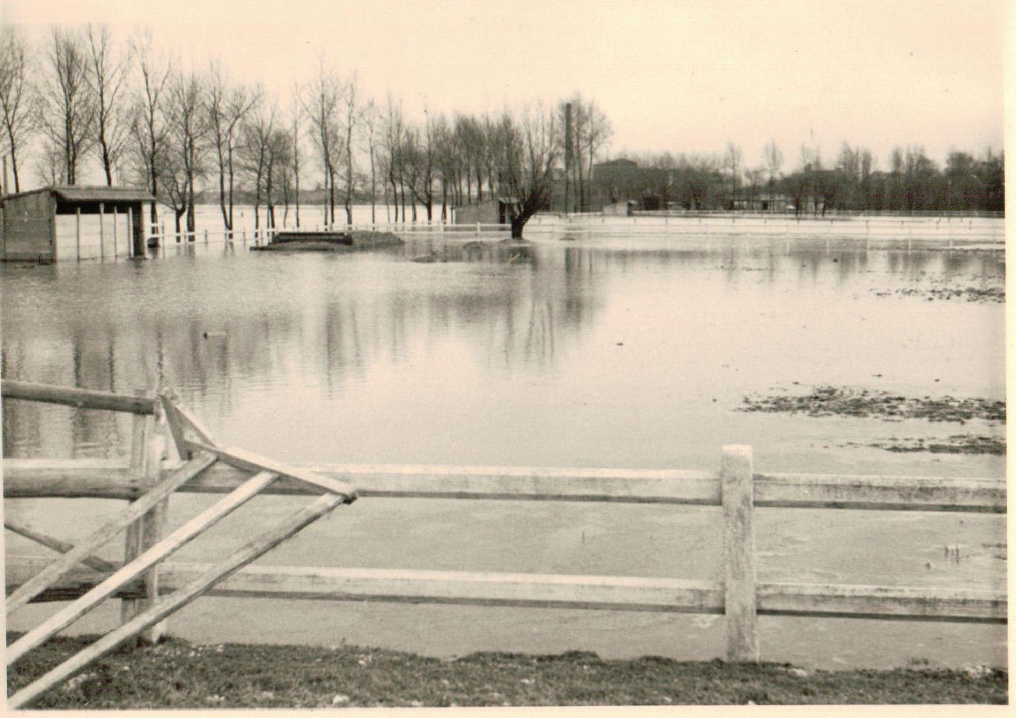 Ruiterclub Gulden Spoor 1947